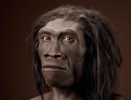 Charles Darwin et la théorie de l'évolution