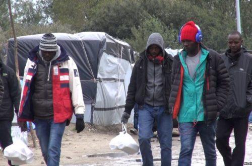 Article : Crise migratoire, ce que font les «influenceurs» africains