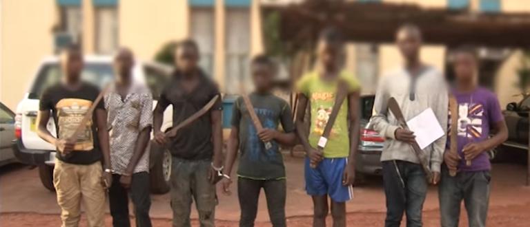 Article : Côte d'Ivoire : les « microbes », une mafia en constitution
